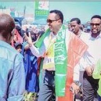 Somaliland: Opposition Parties Assume Control Of Local Councils