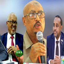 """DAAWO: """"Somaliya Ayaa Ka Aqoon Badan  SLAND"""" Faysal Cali Waraabe"""