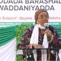 DAAWO: Edna Aadan Oo Ka Hadashay Barashada Dastuurka Somaliland