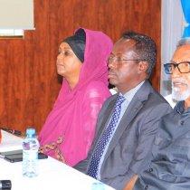 Murashaxiinta Mucaaradka Soomaaliya oo La Kulmay Siyaasiyiinta Ka Soo Jeeda Somaliland