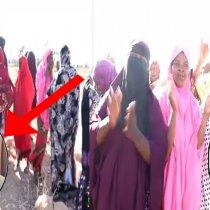 DAAWO: Bulshada Hargaysa Oo Ku Baaqay In La Bedelo Maayar Soltelco, Maayar Cidina Ammaanay
