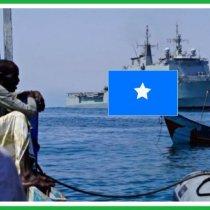 DAAWO DFS oo sheegtay in ay ka hortageyso Shirkaddo Kalluumeysi Sharci darro ah ka wadaan Biyaha Somalia
