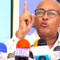 Gudoomiye Ciro Oo Ka Hadlay Laba Qof Oo Somaliland Ah Oo Laga Helay Coronavirus