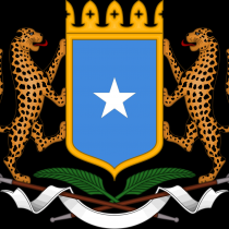 The Federal Government of Somalia : Press Statement (for immediate release)